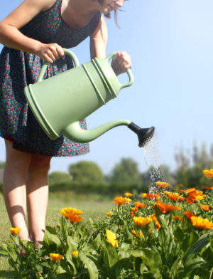 xala watergieter 12 liter groen